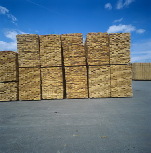 New Brunswick timber, stacked